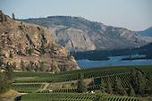 British Columbia, Canada Wine libraries