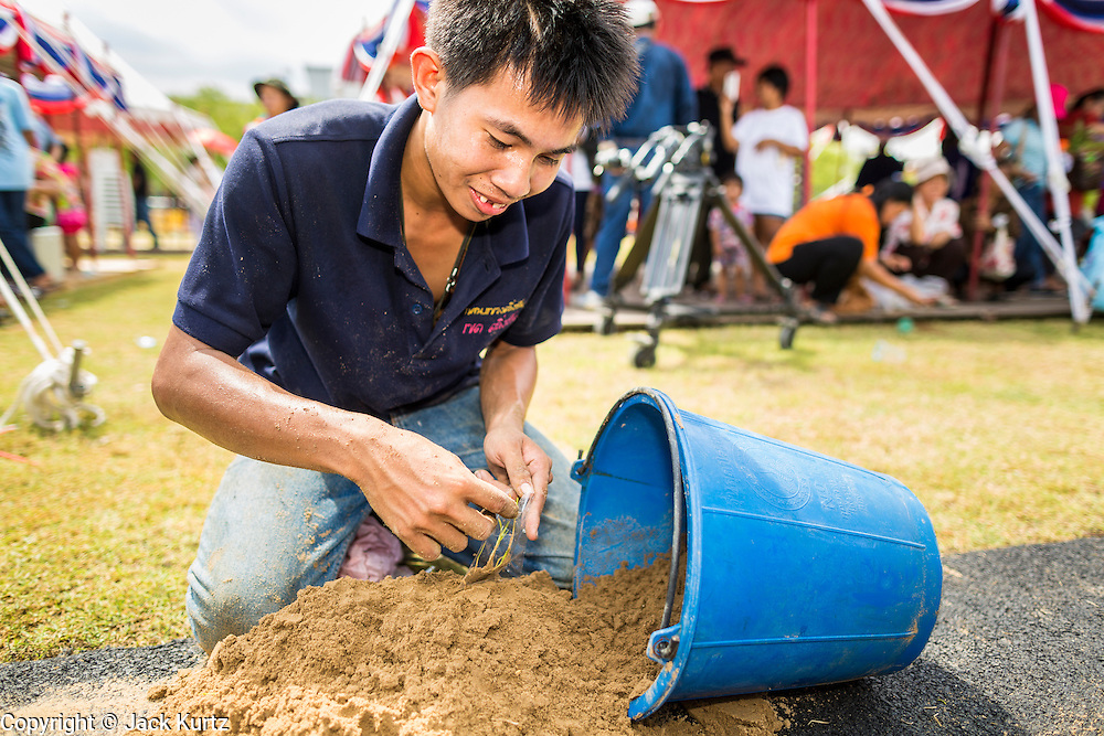 13 MAY 2013 - BANGKOK, THAILAND:  A man sifts through the sand looking for rice seeds blessed by Brahmin priests at the Royal Ploughing Ceremony. After the ceremony, thousands of Thais, mostly family formers, rush onto the ploughed ground to gather up the blessed rice seeds sown by the Brahmin priests. The Royal Plowing Ceremony is held Thailand to mark the traditional beginning of the rice-growing season. The date is usually in May, but is determined by court astrologers and varies year to year. During the ceremony, two sacred oxen are hitched to a wooden plough and plough a small field on Sanam Luang (across from the Grand Palace), while rice seed is sown by court Brahmins. After the ploughing, the oxen are offered plates of food, including rice, corn, green beans, sesame, fresh-cut grass, water and rice whisky. Depending on what the oxen eat, court astrologers and Brahmins make a prediction on whether the coming growing season will be bountiful or not. The ceremony is rooted in Brahman belief, and is held to ensure a good harvest. A similar ceremony is held in Cambodia.   PHOTO BY JACK KURTZ