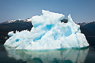An iceberg and its reflection in Endicott Arm fjord contrasts with the blue sky, turquoise water, and the greens of the Tongass National Forest in the Inside Passage of Southeast Alaska. Summer. Afternoon.