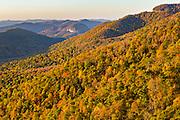 Autumn foliage at sunrise in Blue Ridge National Park from Pounding Mill Overlook outside Asheville, North Carolina.