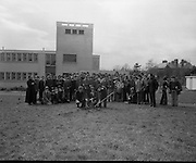 Boys Planting Trees On Griffith Avenue - Ardscoil Ris .05/04/1976.04/05/1976.5th April 1976.Picture shows schoolboys and teachers from Ardscoil Ris planting trees on Dublin's Griffith avenue.
