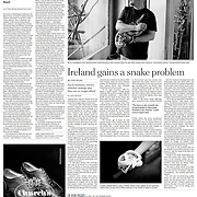 "Tearsheet of ""Boom Over, St. Patrick's Isle Is Slithering Again"" published in The International Herald Tribune (Page Two)"
