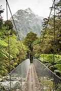 Another swing bridge near the Roaring Burn, Milford Track, Fiordland