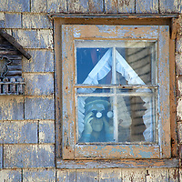 North America, Canda, Nova Scotia, Guysborough County. Character in the window of a weathered home of Nova Scotia watches the weather.