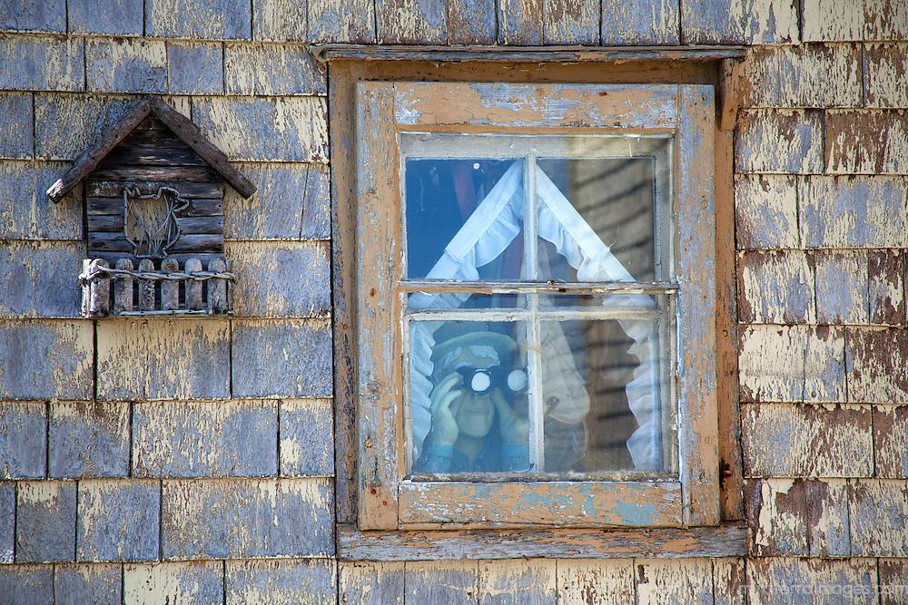 North America, Canda, Nova Scotia, Guysborough County. Character in the window of a weathered home of Nova Scotia watches the weather.