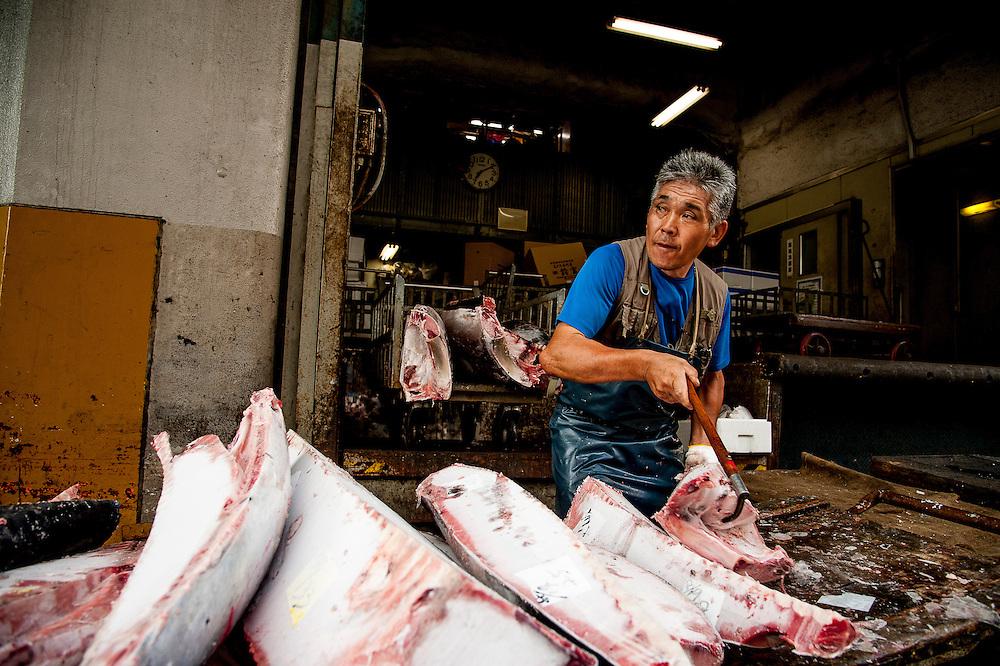 Scenes from Tsukiji Market, the largest wholesale fish market in the world, located in Tokyo, Japan. Tokyo Metropolitan Central Wholesale Market (東京都中央卸売市場