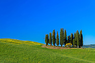 Europe, Italy, Tuscany, Toscana,San Quirico d'Orcia, landscape