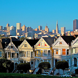 San Francisco city scape and skyline