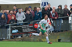 NEWTOWN, WALES - Saturday, May 2, 2015: The New Saints' Matthew Williams celebrates scoring the first goal against Newtown during the FAW Welsh Cup final match at Latham Park. (Pic by Ian Cook/Propaganda)