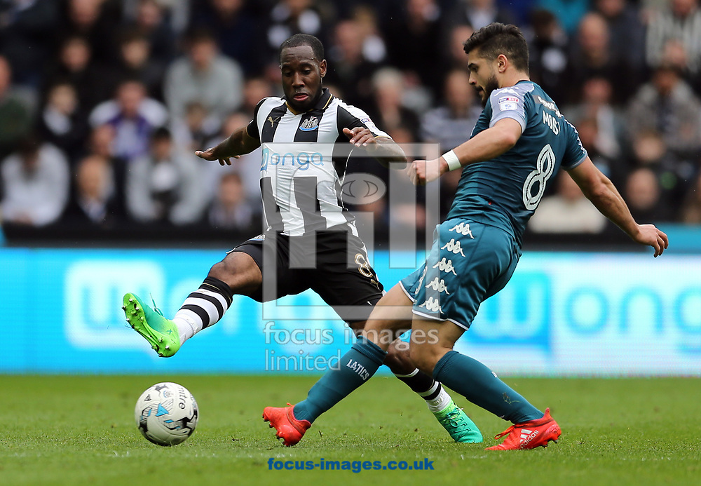Vurnon Anita (l) of Newcastle United and Sam Morsy of Wigan Athletic during the Sky Bet Championship match at St. James's Park, Newcastle<br /> Picture by Simon Moore/Focus Images Ltd 07807 671782<br /> 01/04/2017