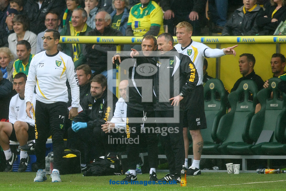 Norwich Manager Neil Adams, Goalkeeping Coach Tony Parks,First Team Coach Mark Robson and First Team Coach Gary Holt off their seats and trying to work out how to beat a stubborn Rotherham rearguard action during the Sky Bet Championship match at Carrow Road, Norwich<br /> Picture by Paul Chesterton/Focus Images Ltd +44 7904 640267<br /> 04/10/2014