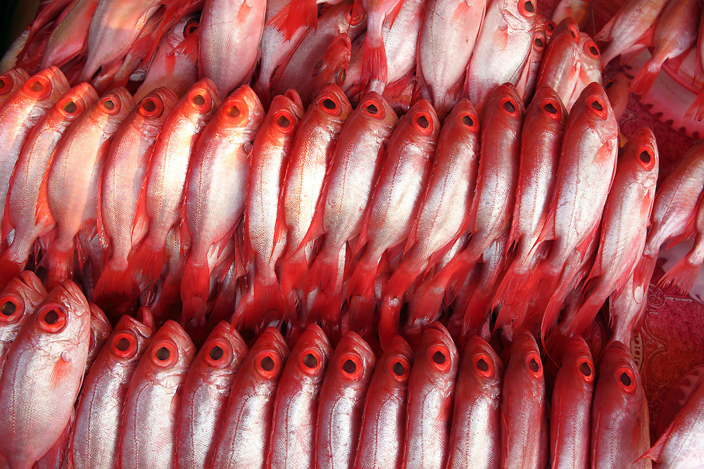 Red snapper at wet market on Kota Kinabalu waterfront, Sabah, Borneo.