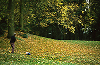 VLEUTEN - Herfst op GC De Haar.