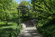 Stone stairs to Summit Rock in Central Park.