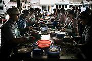 A Burmese migrant working illegally in a Thai owned shrimp processing plant sort and grade shrimp in Samut Sakhon, Thailand.                  Un migrant birman travaillant illégalement dans une usine thaïlandaise de transformation de crevettes trie et classe des crevettes à Samut Sakhon, Thaïlande.