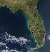 Sediments of Algal Bloom line the coast of Florida in the southern United States of America, giving the peninsula a greenish frame.  An algal bloom is a rapid increase or accumulation in the population of algae in an aquatic system.