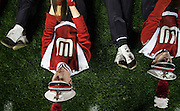 Wisconsin vs Stanford on Tuesday January 1, 2013 at the 99th Rose Bowl in Pasadena, Calif.  (AP Photo/Michael Yanow)