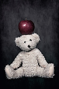 a white teddy bear with a red apple on the head