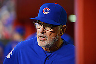 PHOENIX, ARIZONA - APRIL 08:  Joe Maddon #70 of the Chicago Cubs looks on from the dugout during the game against the Arizona Diamondbacks at Chase Field on April 8, 2016 in Phoenix, Arizona.  (Photo by Jennifer Stewart/Getty Images)