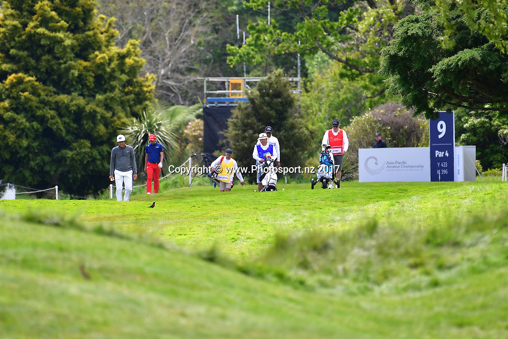 Golfers on the 16th during the final day of the Asia-Pacific Amateur golf Championship at the Royal Wellington Golf course in Upper Hutt on Sunday the 29 October 2017. Copyright Photo by Marty Melville / www.Photosport.nz