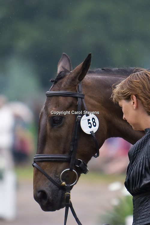 Jayne Doherty and The Only One at Bramham Horse Trials  2010
