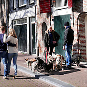 April 19, 2016 - 17:30<br />
