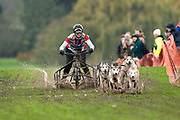 Competitor in 4 dog class during the WSA Dryland World Championship 2019 at Firle Country Estate in the South Downs National Park, Lewes, Sussex, United Kingdom on 16 November 2019.