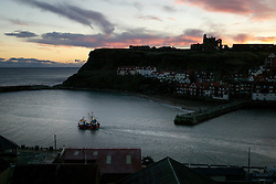 © Licensed to London News Pictures. <br /> 19/11/2016 <br /> Whitby, UK.  <br /> A fishing boat heads out of the harbour on a cold Autumn sunrise in the North Yorkshire town of Whitby on the Northeast coast.  <br /> Photo credit: Ian Forsyth/LNP