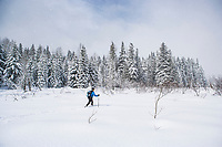 A woman cross country skiing in a meadow surrounded by forest covered in snow.