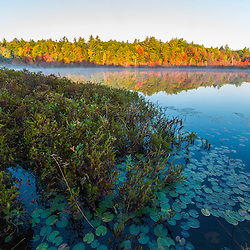 Round Pond in Barrington, New Hampshire. Fall. Bog.