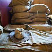 The processing facility of the Bella Vista coffee farm is shown. (Joshua Trujillo, Starbucks)