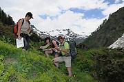 links: Bettina Leitner (Botanik)<br /> mitte:Maria Kataharina Liebrecht (Botanik, Naturschutz) <br /> rechts: Günther Nowotny (Botanik)<br /> GEO-Tag der Artenvielfalt im Nationalpark Hohe Tauern 2013. Österreich.