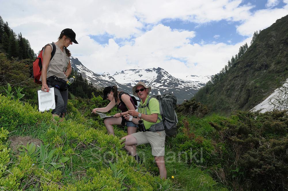 links: Bettina Leitner (Botanik)<br /> mitte:Maria Kataharina Liebrecht (Botanik, Naturschutz) <br /> rechts: G&uuml;nther Nowotny (Botanik)<br /> GEO-Tag der Artenvielfalt im Nationalpark Hohe Tauern 2013. &Ouml;sterreich.