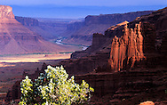 Fisher Towers and the Colordado River at sunrise. Near Moab, Utah