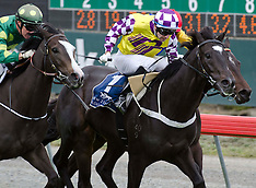 Christchurch-Racing, Sothys 40 New Zealand 2000 Guineas