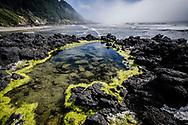 A landscape photograph of a tide pool on the coast of Cape Perpetua, Oregon.