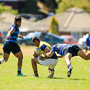 Premiers - Tawa v Johnsonville  (Preseason) - 12 March 2016