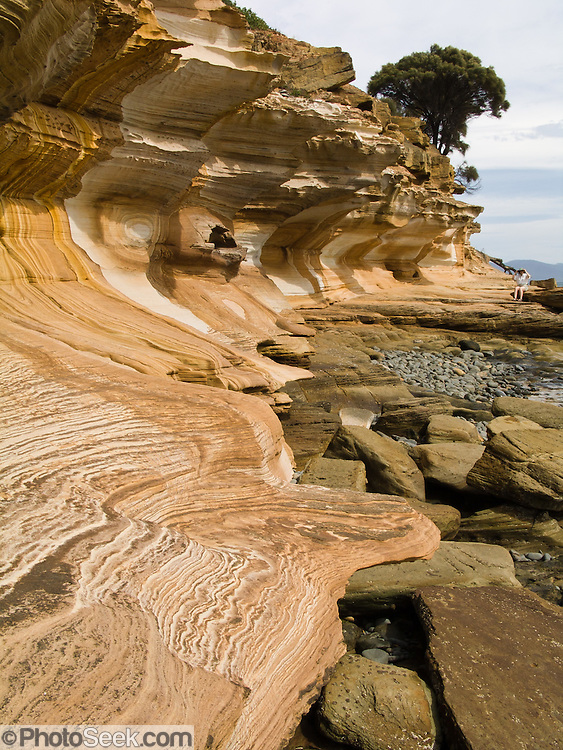 "Coastal sandstone rock patterns are exposed in the Painted Cliffs of Maria Island National Park, Darlington, Tasmania, Australia. Undercut by the Tasman Sea (South Pacific Ocean), the Painted Cliffs date from the Permian and Triassic, 300-200 million years ago. Published in ""Basic Geomorphology"" book by Montri Choowong, Ph.D in the Department of Geology, Chulalongkorn University, Bangkok, Thailand."