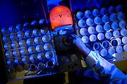 Vazante_MG, Brasil...Pesquisa em uma unidade industrial de uma empresa em Vazante, Minas Gerais...Research in an industrial company in Vazante, Minas Gerais...Foto: LEO DRUMOND / NITRO