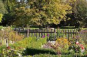 Natural Garden 1015