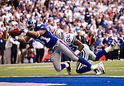 IRVING, TX - JANUARY 13:   Amani Toomer #81 of the New York Giants reaches across the goal line for a touchdown near the end of the second quarter with Ken Hamlin #26 of the Dallas Cowboys hanging on during the NFC Divisional playoff at Texas Stadium on January 13, 2008 in Dallas, Texas.  (Photo by Wesley Hitt/Getty Images) *** Local Caption *** Amani Toomer Sports photography by Wesley Hitt photography with images from the NFL, NCAA and Arkansas Razorbacks.  Hitt photography in based in Fayetteville, Arkansas where he shoots Commercial Photography, Editorial Photography, Advertising Photography, Stock Photography and People Photography