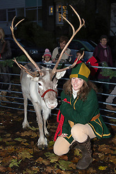 © Licensed to London News Pictures. 17/11/2012. London, England. Handler with a reindeer. Radio, TV presenter, comedian and DJ Alex Zane switches on the Christmas lights in Highgate Village, North London. Photo credit: Bettina Strenske/LNP