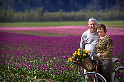 July 21, 2019 - Senior Couple With Tulips In Bicycle Basket (Credit Image: © Richard Wear/Design Pics via ZUMA Wire)