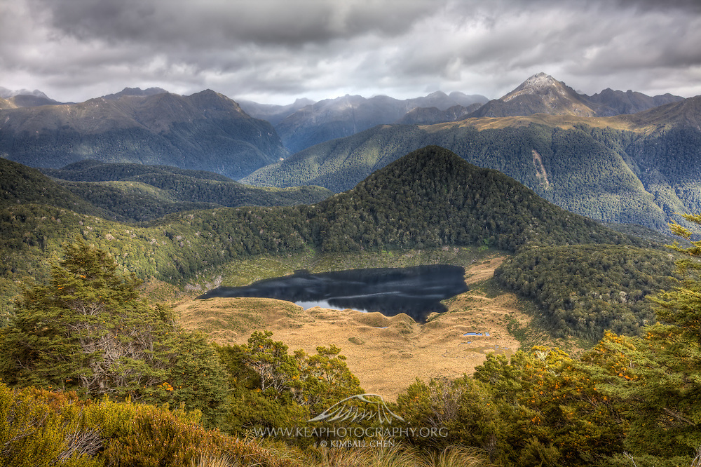 Hidden in the forests and valleys of Fiordland are small lakes and fields of tussock.  One of many scenic views available along the Green Lake Track in Fiordland, New Zealand.