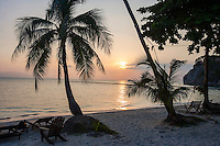 Palm trees and deck chairs on beach at sunset; Koh Pha Ngan; Thailand