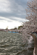 A stormy day at the Tidal Basin.