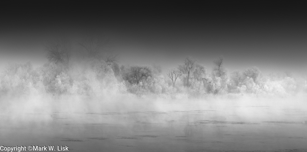 Frost covers tree branches along the Snake River  rise from the fog.
