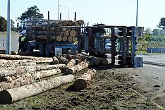 Hastings-Logging truck drops load