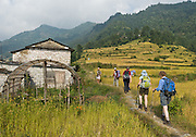 Trekking on stone steps through rice terraces, above Phedi, near Pokhara, Nepal.