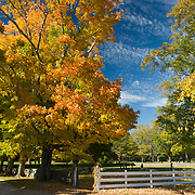 Fall colors at Appleton Farms & Grass Rides, Hamilton, Massachusetts